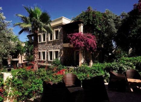 Hotel Zeytinada günstig bei weg.de buchen - Bild von 5vorFlug