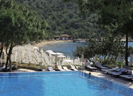 Hotel Bodrum Park Resort günstig bei weg.de buchen - Bild von 5vorFlug