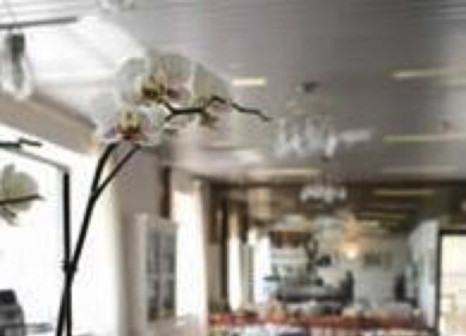 Hotel Aurora in Oberitalienische Seen & Gardasee - Bild von Schauinsland-Reisen