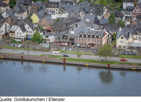 Hotel Ellenzer Goldbäumchen günstig bei weg.de buchen - Bild von Vtours