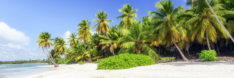 Dom. Republik / Punta Cana p.P. ab 820 €