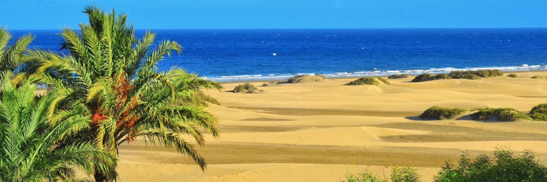 Gran Canaria p.P. ab 217 €