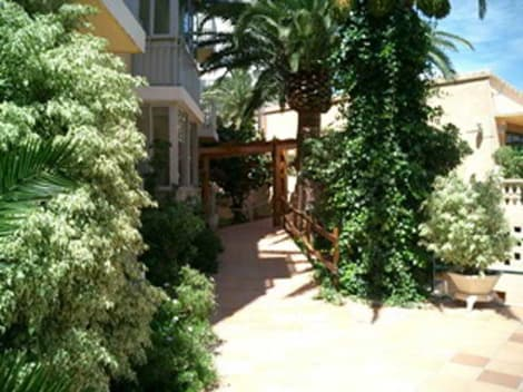 Apartamentos Palm Court