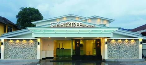 Star Tree Homestay Hotel