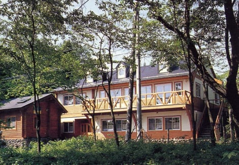 Pension and Log Cottage Hoshinoko Hotel