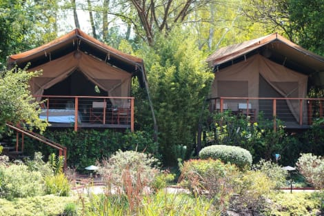 Hotel Wildebeest Eco Camp