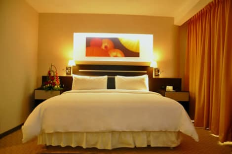 HotelHotel Plaza Meru