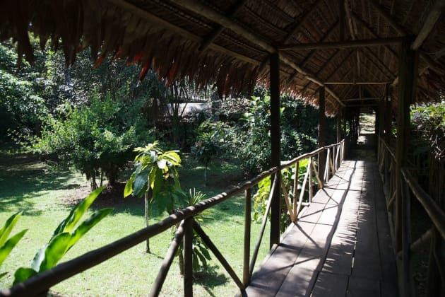 Amazonas Sinchicuy Lodge Hotel thumb-2