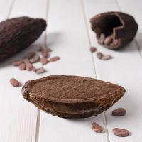 Cacao helado