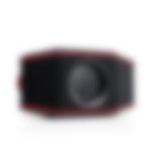 Bluetooth Speaker ROCKSTER GO