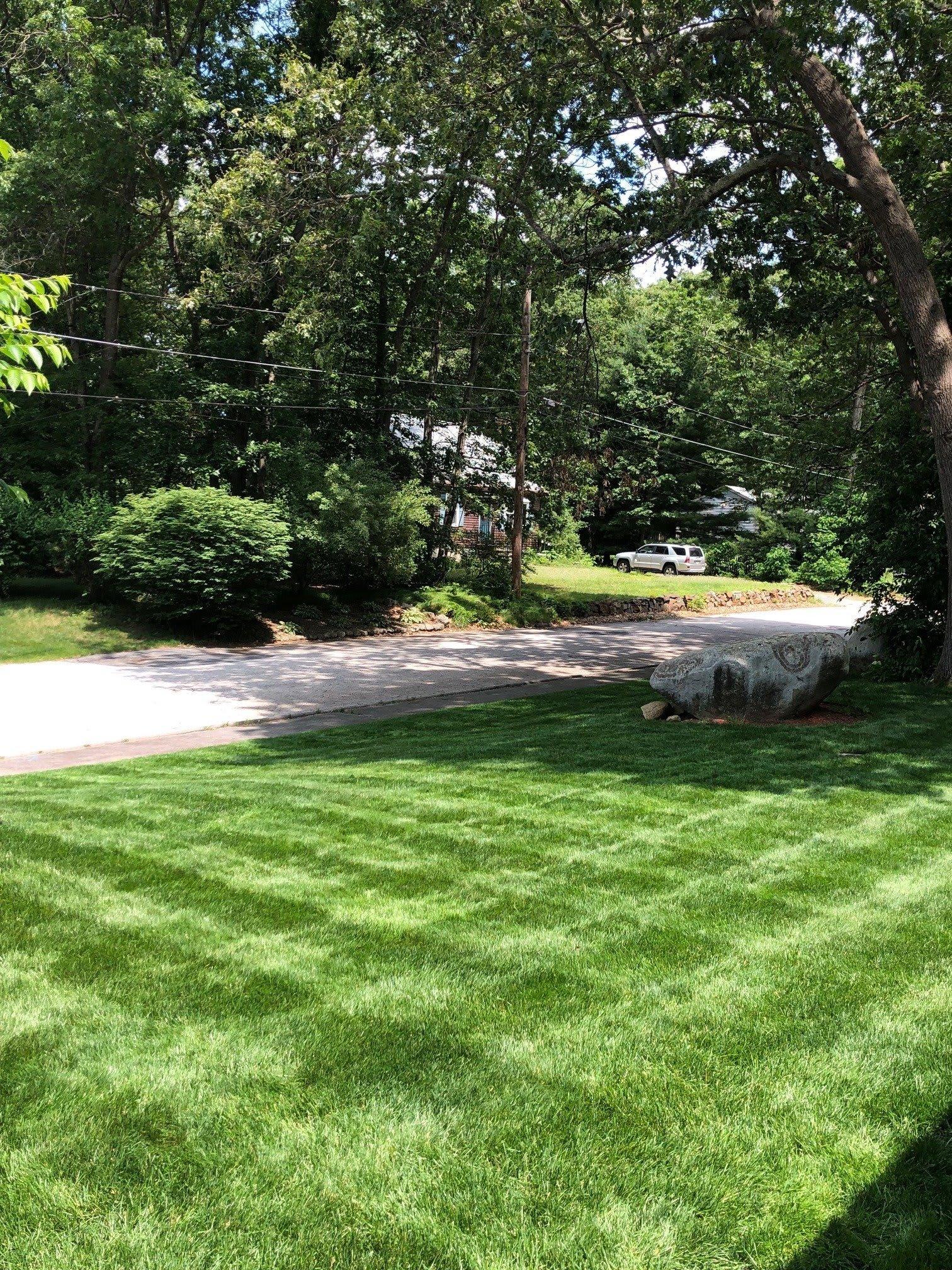 Spring Lawn Fertilizer Application