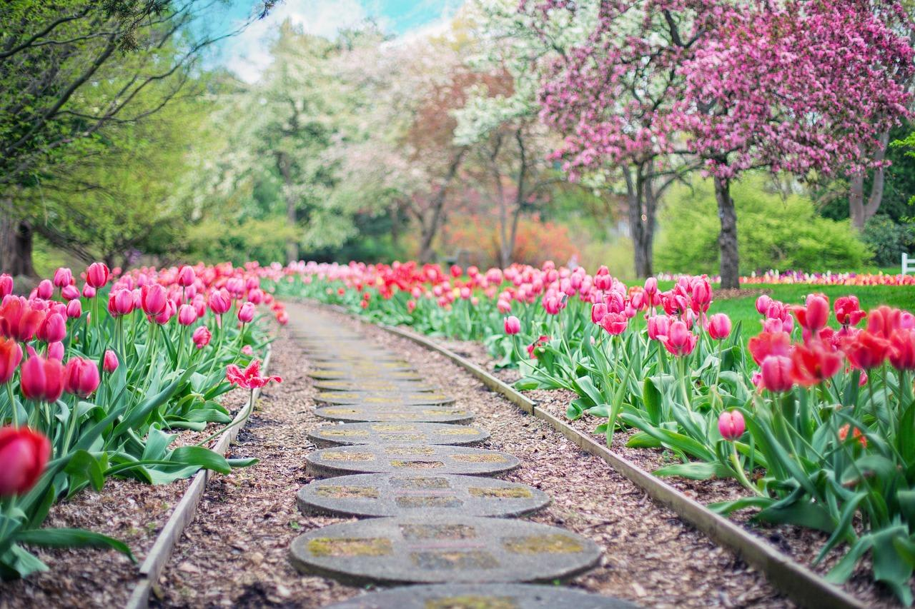 walking path with circle stones and surrounded by pink flowers