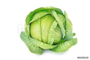 how to pick cabbage