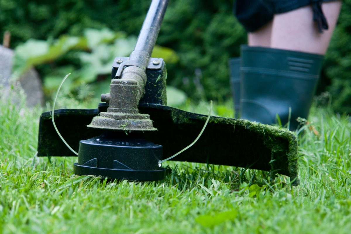 10 Reasons You Should Switch to an Electric String Trimmer