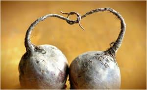 beets and thyroid