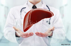 excretion of toxins from your liver