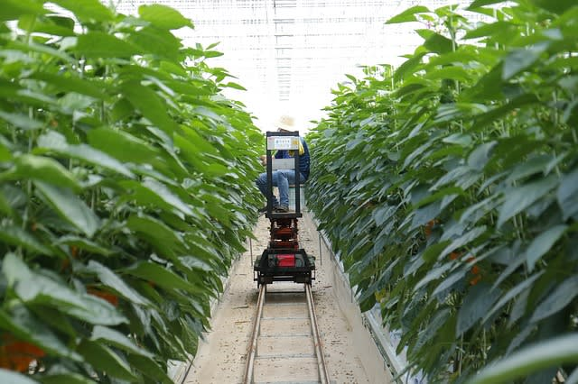 smart farming cart on track collecting data - what is the internet of things