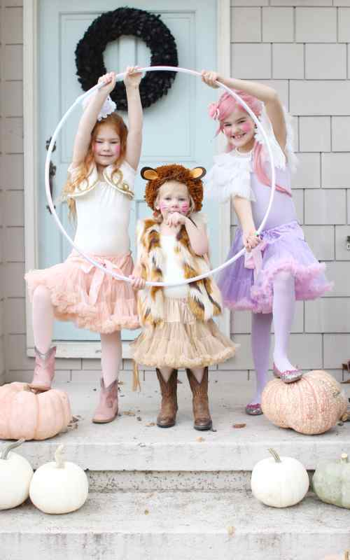 Easy Circus Costumes for Halloween - Lion Tamer, Lion, and Trapeze Artist