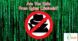 Cyber Security: Are you safe from Cyber Criminals?