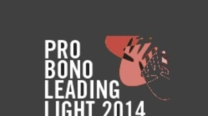 Pro bono survey 2014: Leading lights