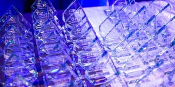 GCR Awards now open for nominations