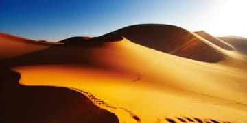 Sonatrach defeats ICC claim over windfall profits tax