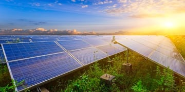 Italy denied security for costs in solar claim
