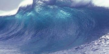 The transparency tsunami