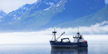 Creditors accuse China Fishery Group of abusing US bankruptcy protections