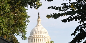 UK legislator preaches corporate transparency to US Congress