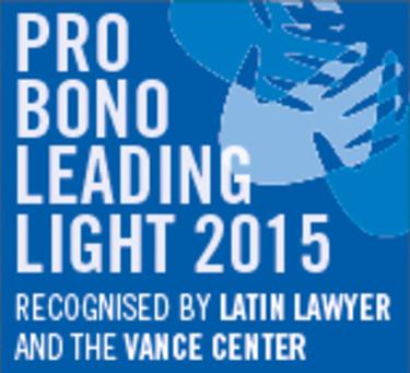 Pro bono survey: Leading lights