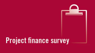 Project finance survey