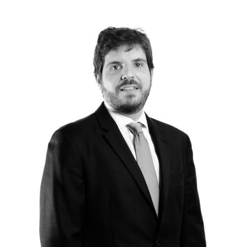 Marcelo Sampaio Góes Ricupero