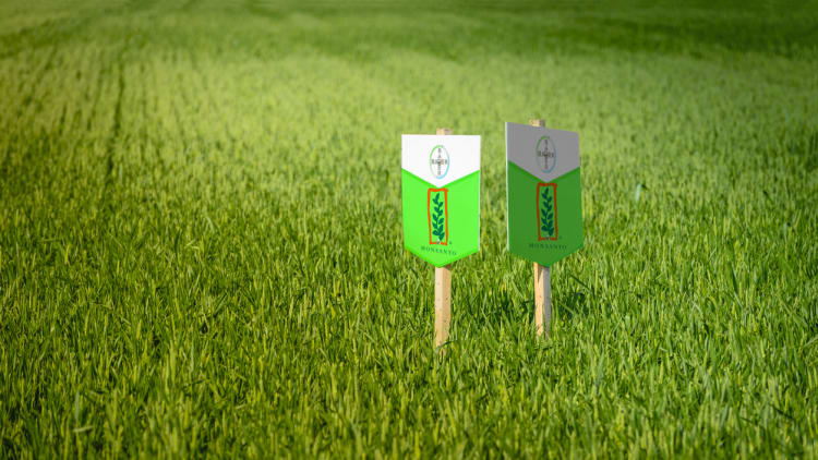 EU greenlights Bayer/Monsanto