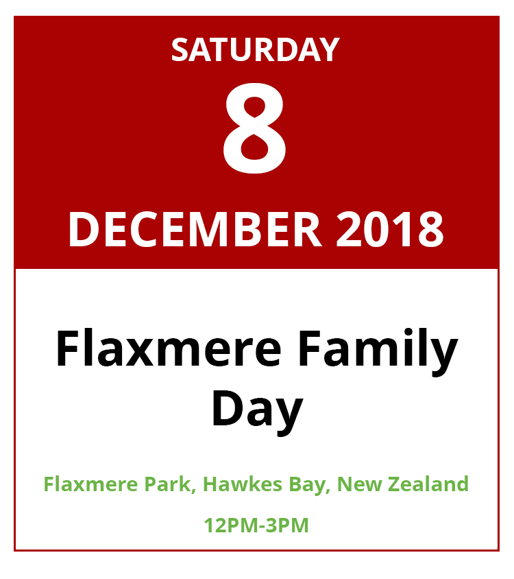 Flaxmere Family Day