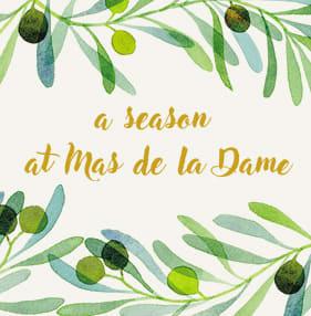 A season at Mas de la Dame
