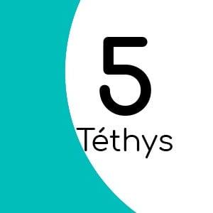 Téthys 5 avec insert laiton