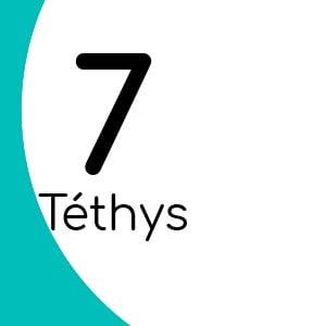 Téthys 7 avec insert laiton
