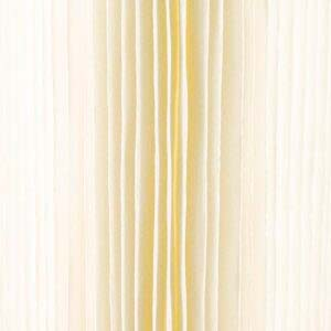 Cartouche Plissée 9 pouces 3/4 - 1 micron