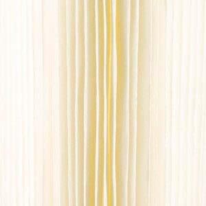 cartouche Plissée 9 pouces 3/4 - 5 microns