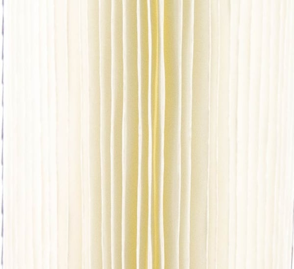 Cartouche sédiments plissée Big Blue 10 pouces, 20 pouces
