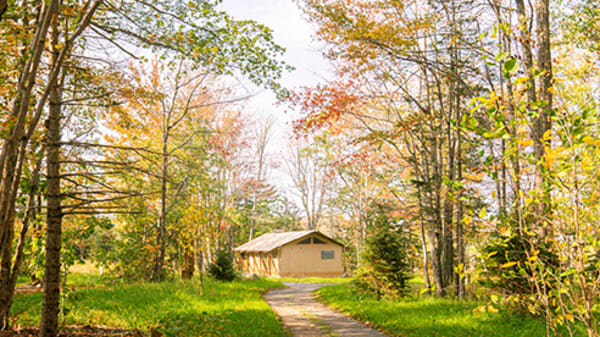 Glamping gets the family outdoors without the fuss