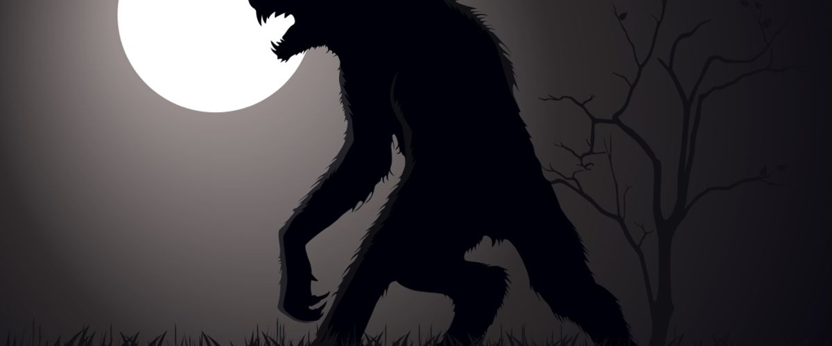 Werewolves, witches, farmers, poachers, hunters and traders. Feature Image