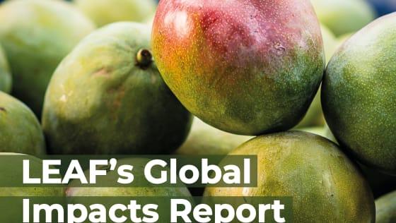 LEAF 2021 Global Impact Report