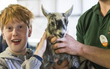 Latest LEAF Open Farm Sunday 2019 Figures Released