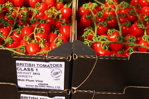 7-Eric-Wall-Ltd-LEAF-Marque-Tomatoes_170811_092057.jpg#asset:2015