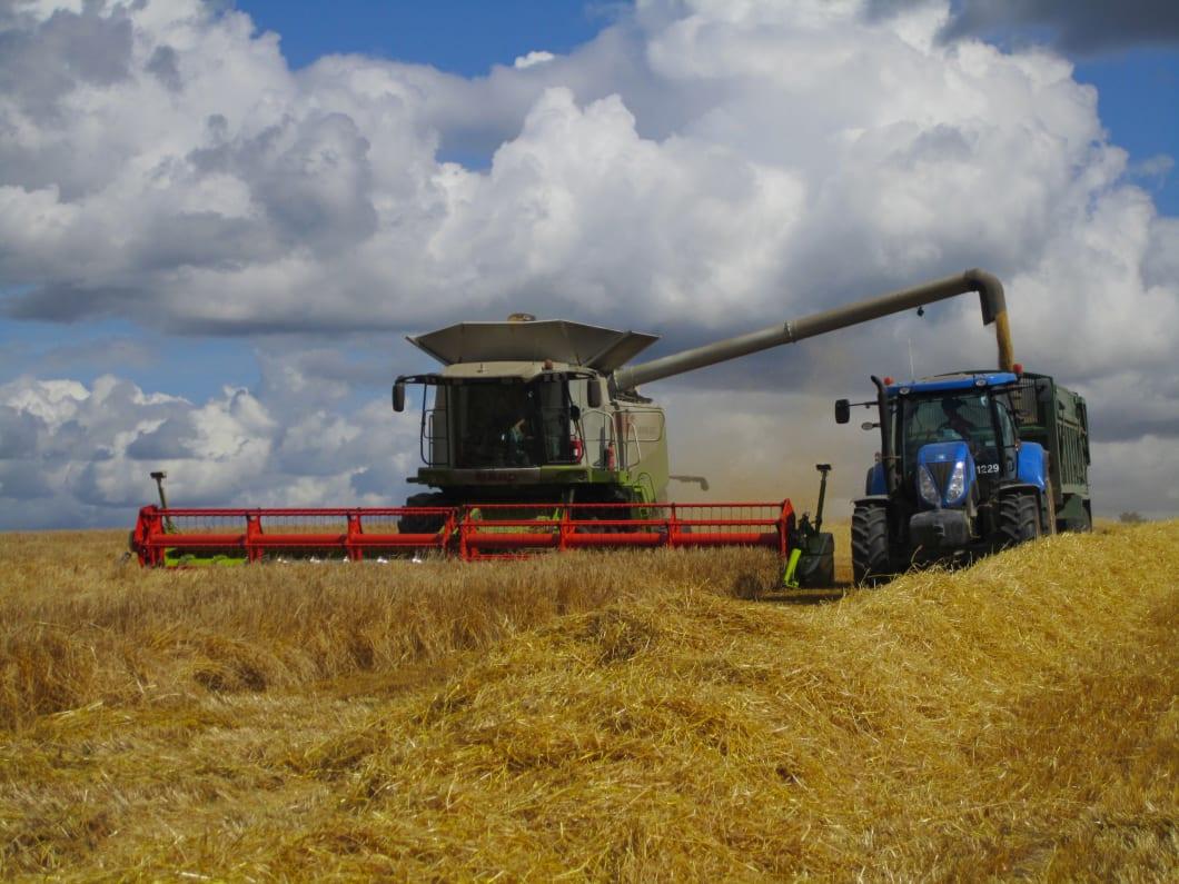 Elveden-Farms-3.JPG#asset:2003