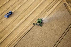 On-farm Crop Type Question