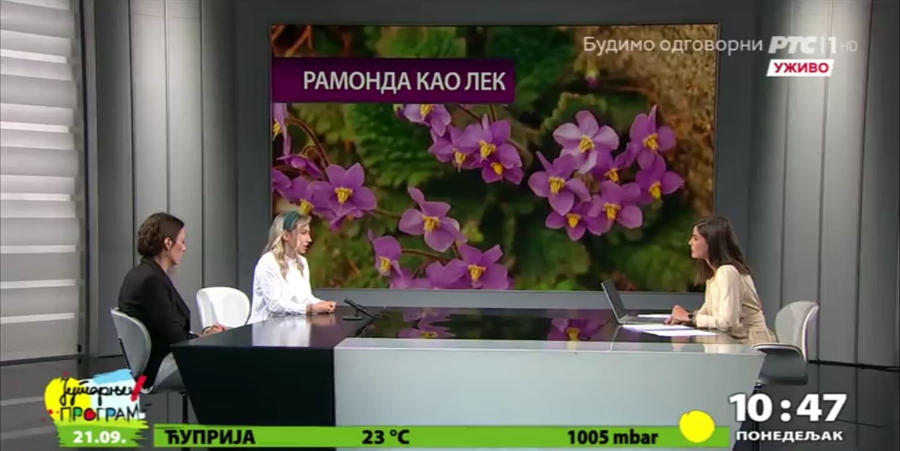 ramonda_medicine_nlzauv