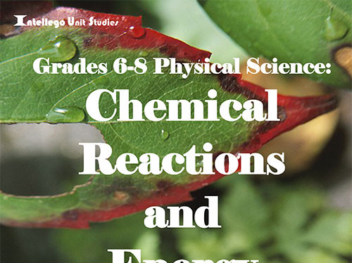 6-8 Physical Science: Chemical Reactions and Energy